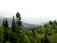 USA Westcoast 2010
